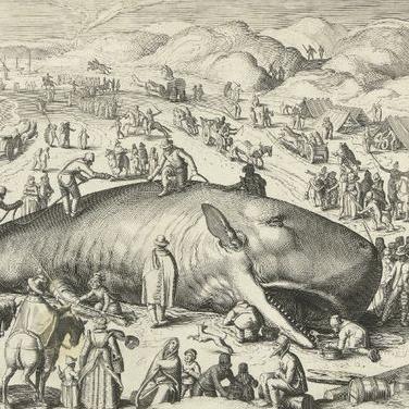 Arca de Noè